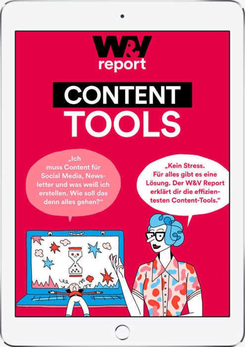 W&V Report Content Tools